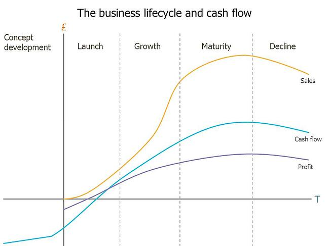 Business lifecycle and cash flow
