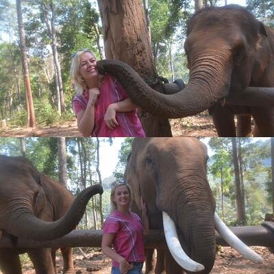 Jasmine Brook with the elephants in Thailand