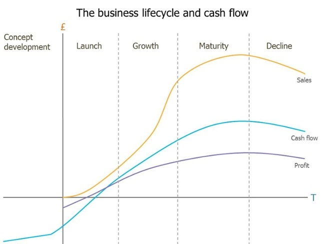 Business lifecycle & cashflow